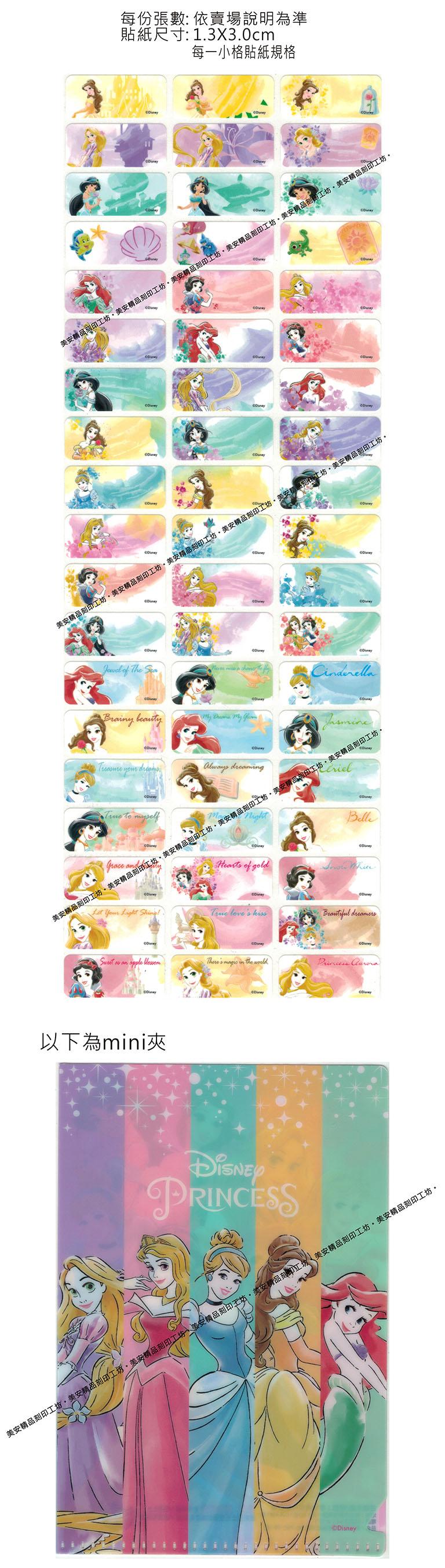 DS款水彩公主迪士尼授權-中型款姓名貼