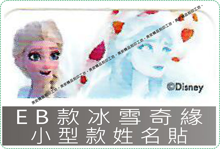 EB款冰雪奇緣-小型款姓名貼紙迪士尼授權